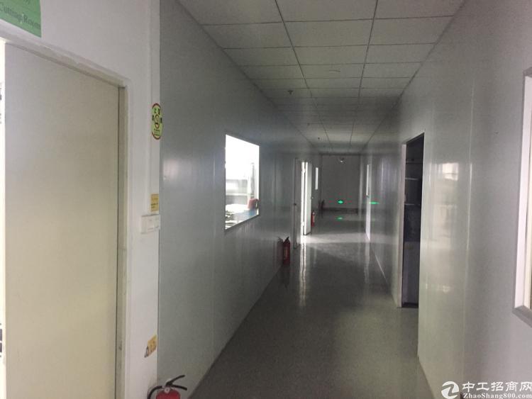 公明南光高速出口附近新出楼上1180带无尘车间,租15-图3