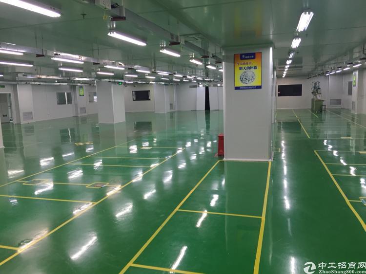 光明高新产业园4楼4600平方米无尘车间厂房招租-图5