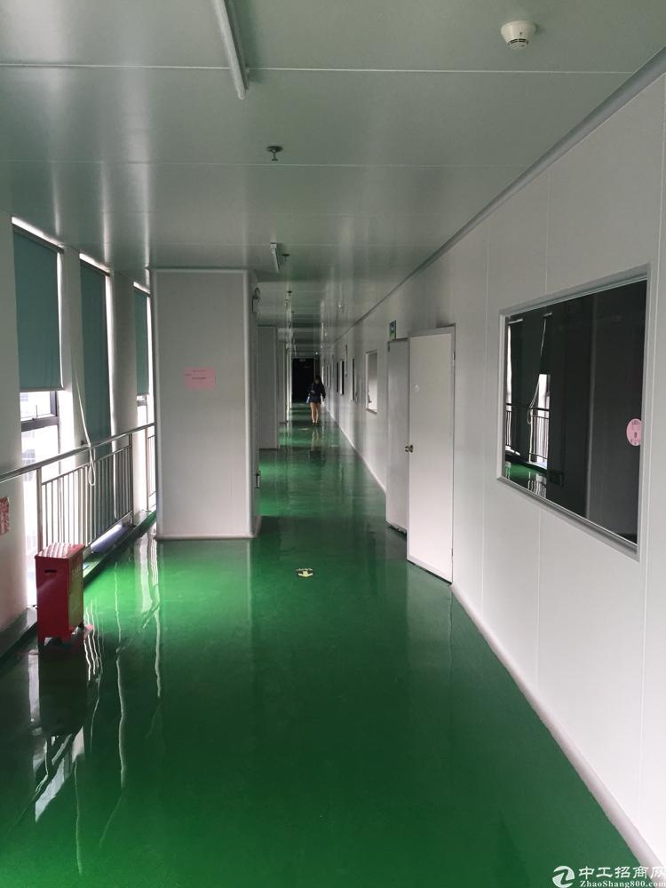 光明高新产业园4楼4600平方米无尘车间厂房招租-图2