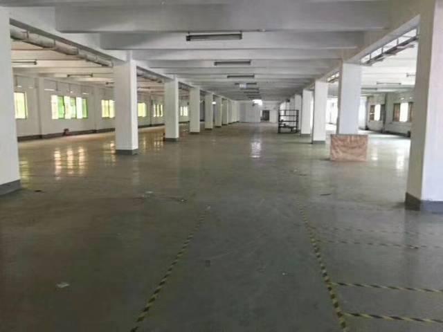 福永整层3700平花园式厂房出租-图2