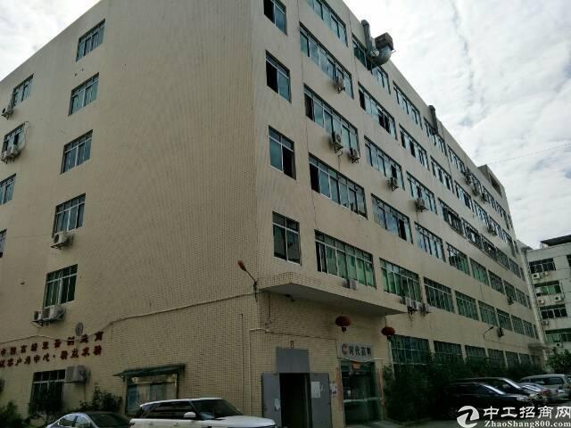 石岩独院300-800平可大小分租带装修厂房出租