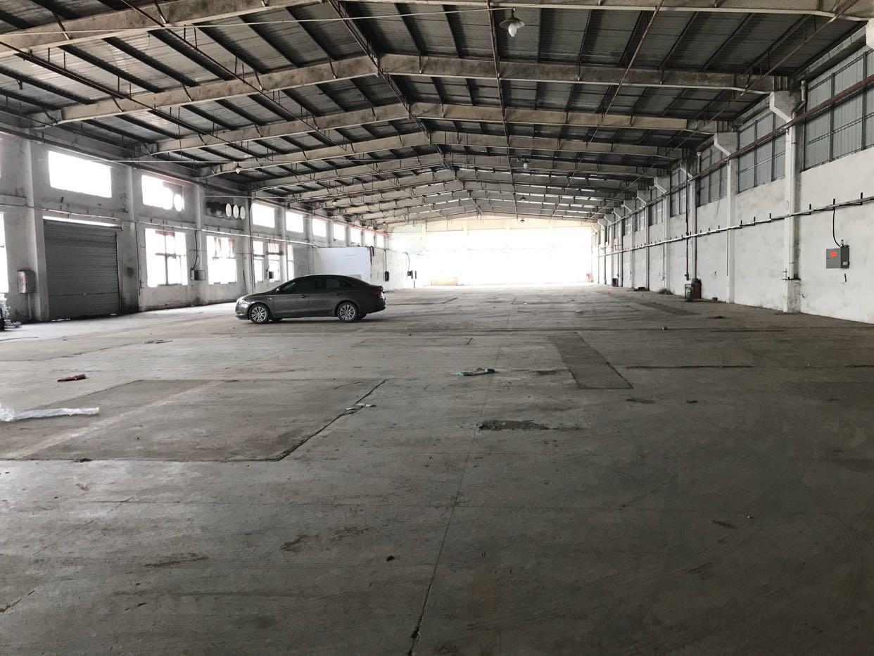 光明大道旁大型钢构2300平方、八米高空地超大