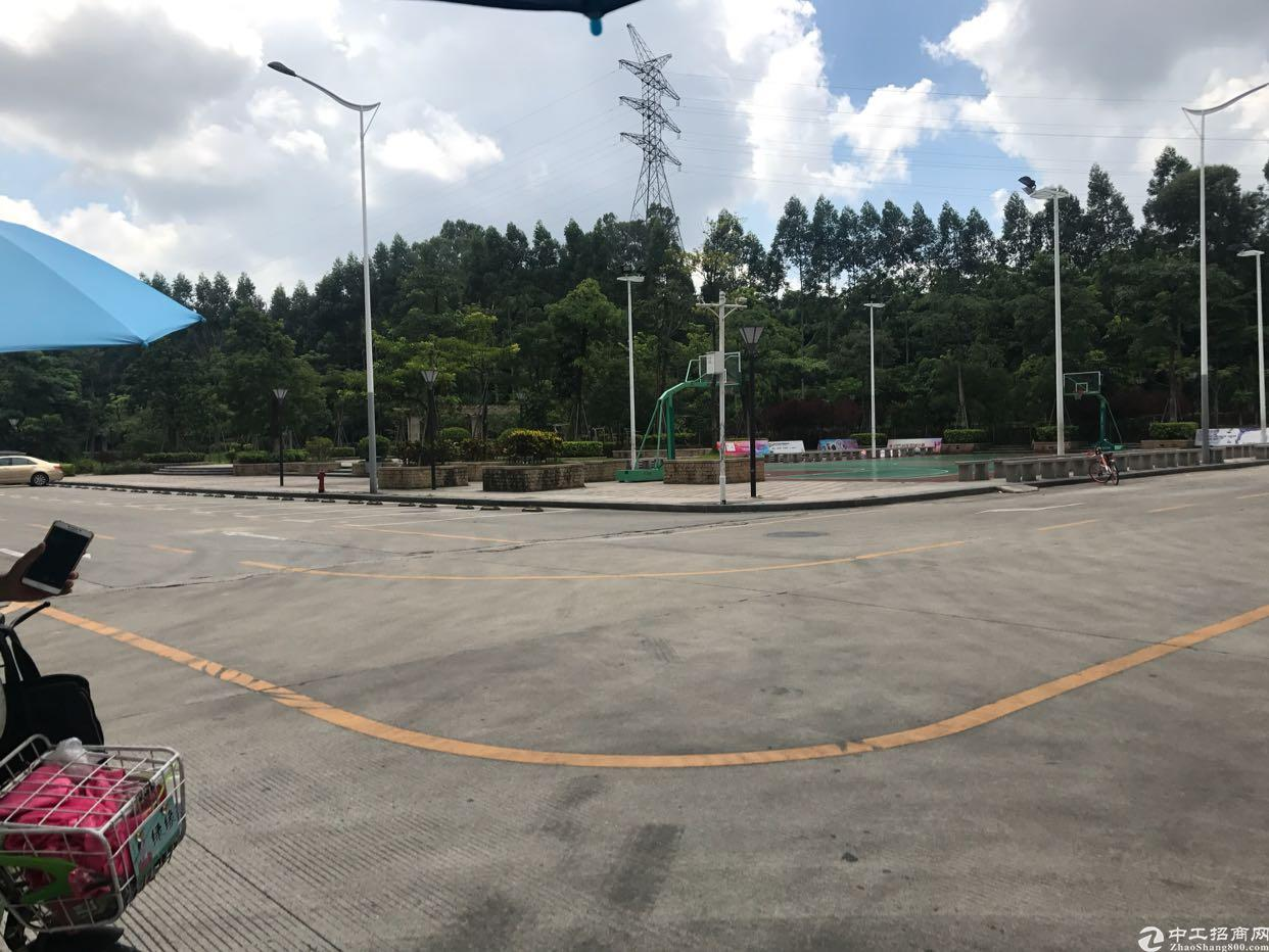 龙华大浪独栋厂房10000平方米-图2