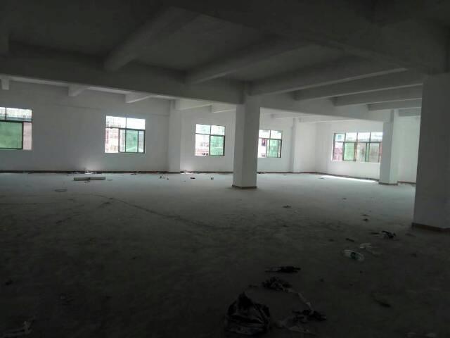 园洲新出楼上厂房面积1000平米-图2