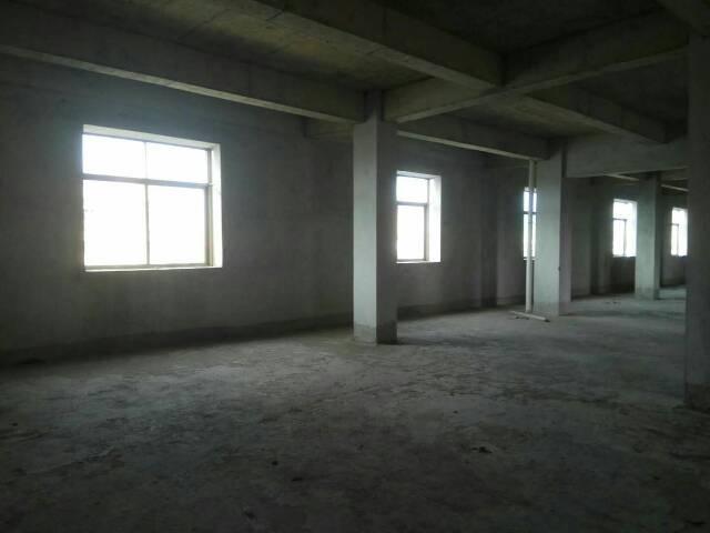 园洲新出楼上厂房面积1000平米-图3