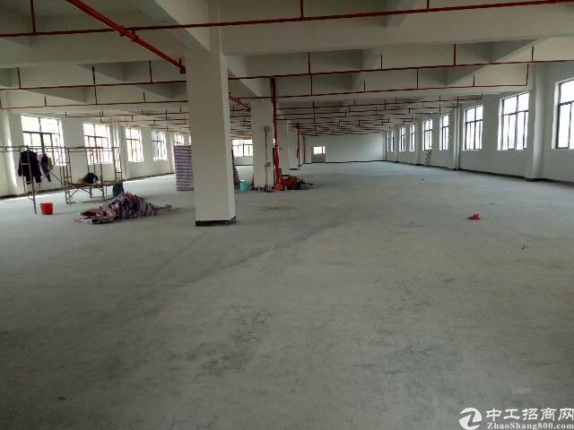 全新厂房出租2600平米