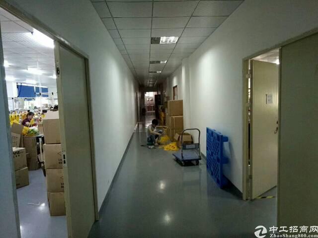 龙华大浪工业园路精装修原房东厂房