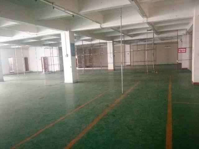 厚街新出二楼标准厂房2000平方米招租