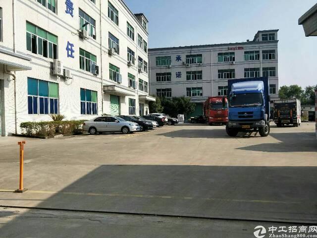 坪山石井一楼标准厂房1300平方面积实在