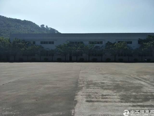 惠州大亚湾新出物流仓库厂房7000平方,滴水9米