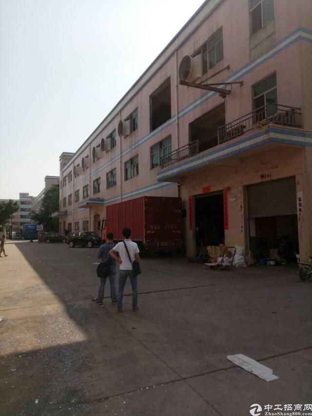 平湖华南城周边一楼6米高带牛角600平方米厂房招租