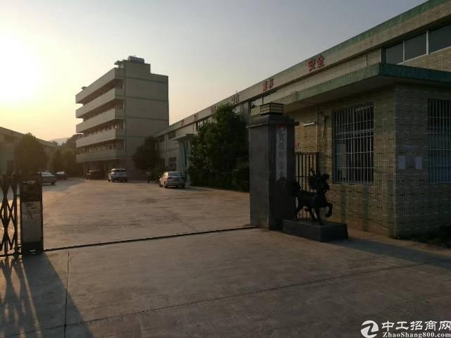 桥头镇工业园分租钢构1200平方