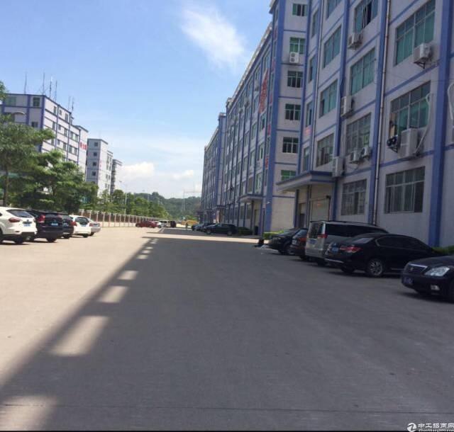 坂田五和利金城科技园带装修厂房3000平方可分租