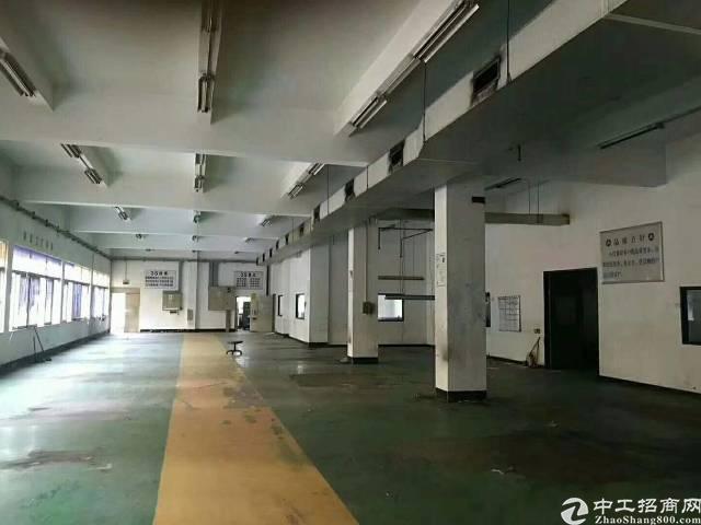 布吉南岭独门独院厂房