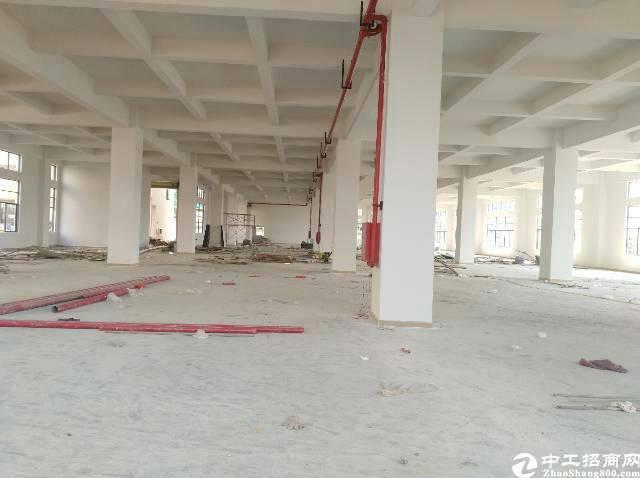 清溪三中全新厂房一整层3200平方招租