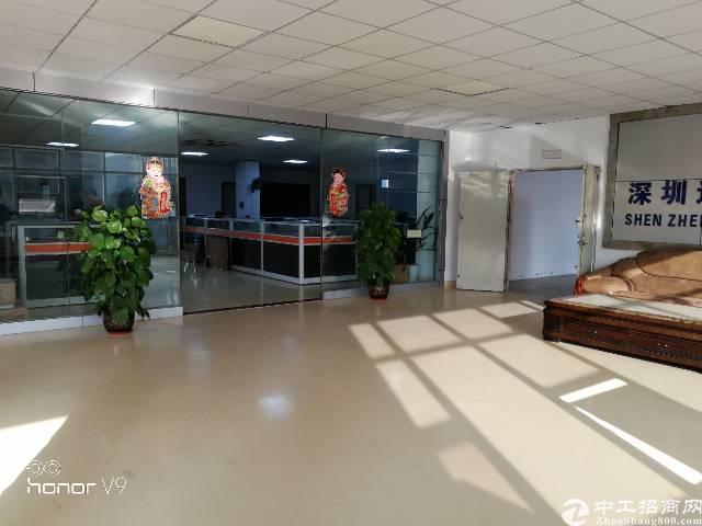 福永凤凰新出装修厂房2500平,免转让费-图4