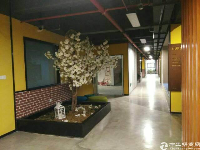 西丽天虹800平精装办公室出租图片3