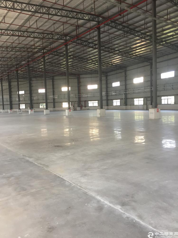 新塘荔新大道全新钢结构厂房