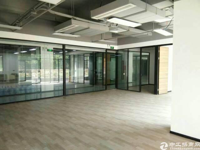 西丽天虹800平精装办公室出租图片4
