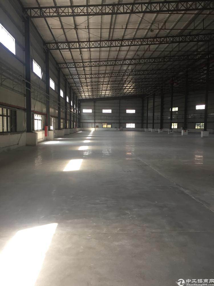 新塘荔新大道全新钢结构厂房-图2