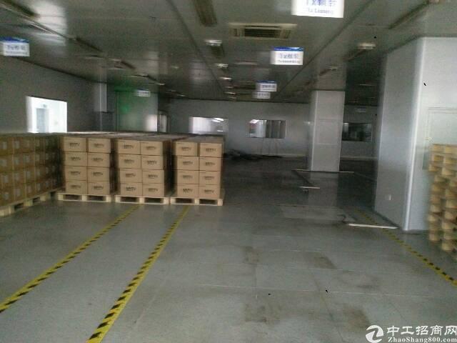 公明高新区新出三楼4600平米万级无尘车间带红本厂房出租