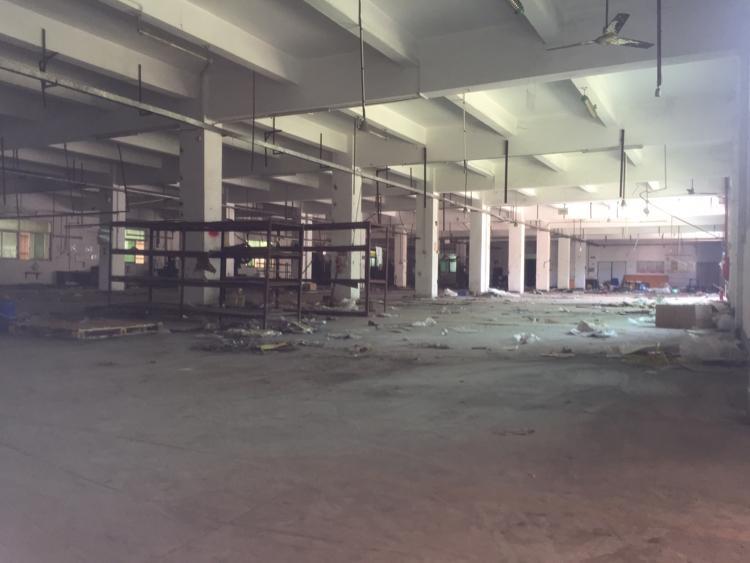 东莞大朗高速出口原房东独院厂房分租一楼5300平方米