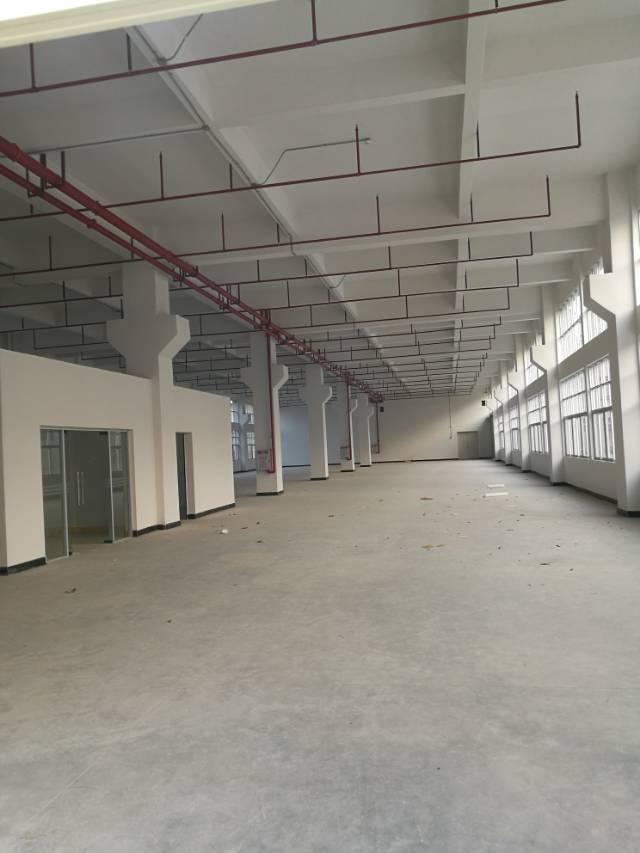 常平袁山贝环城路边新空出标准一楼1500平方