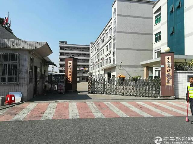大朗镇华为附近刚出9.9成独院标准厂房