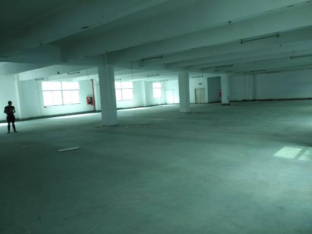 龙胜地铁站附近独院楼上整层1080平