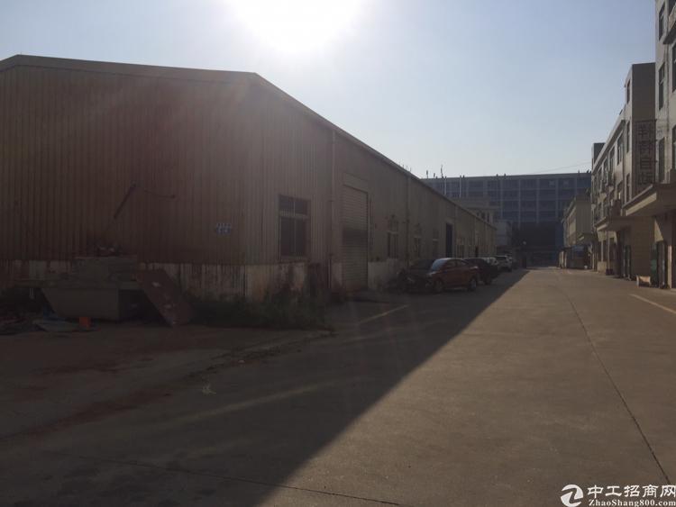 观澜福民福前路一楼钢结构450平出租