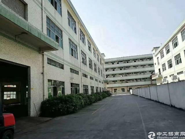 公明将石新出独院三层厂房6000平米-图7