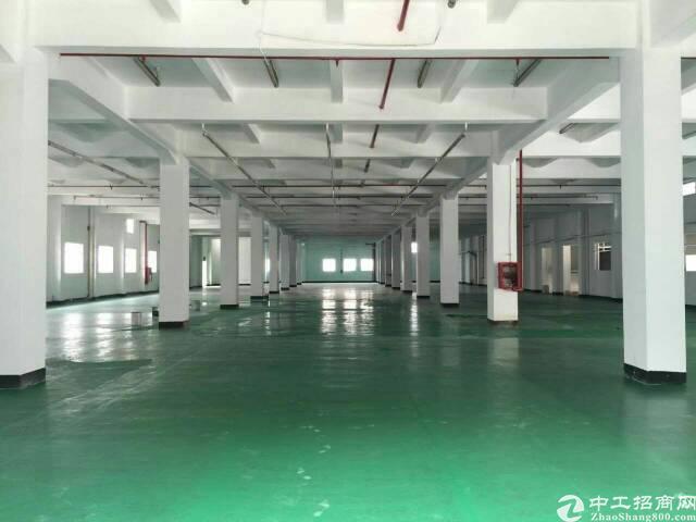 厚街镇汀山村独门独院花园式厂房20000方