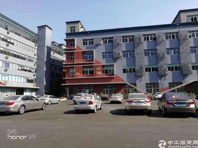 福永高速口厂房300,500,1000平出租