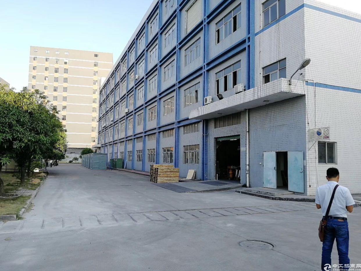 松岗一手房东出租实际面积厂房2241一层