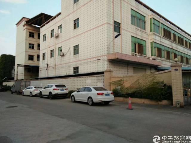 独门独院8400平米厂房出租-图3