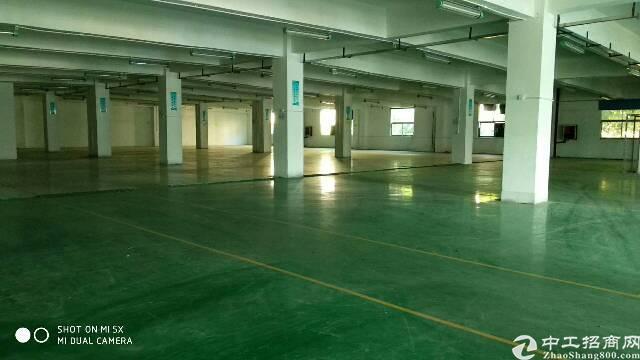 福永桥头地铁口新出豪华装修楼上3000平方-图4