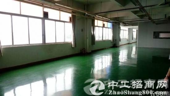 原房东花园式厂房招租8000平米配独立办公楼-图2