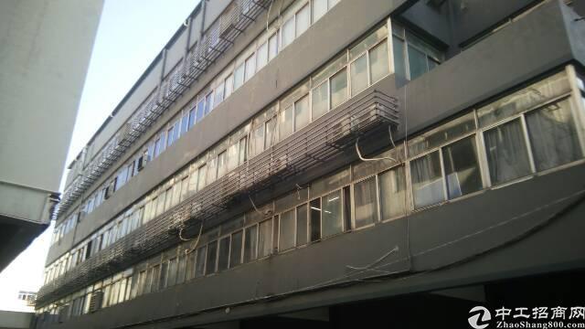 福永新和沿江高速路口边精装修厂房招租-图3