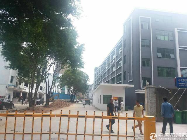 龙华新区布龙路龙胜地铁口村委厂房出租