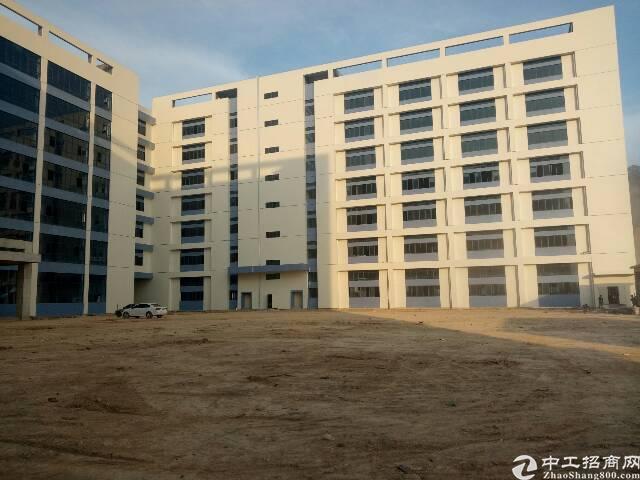 常平镇板石工业区原业主厂房可分租-图3