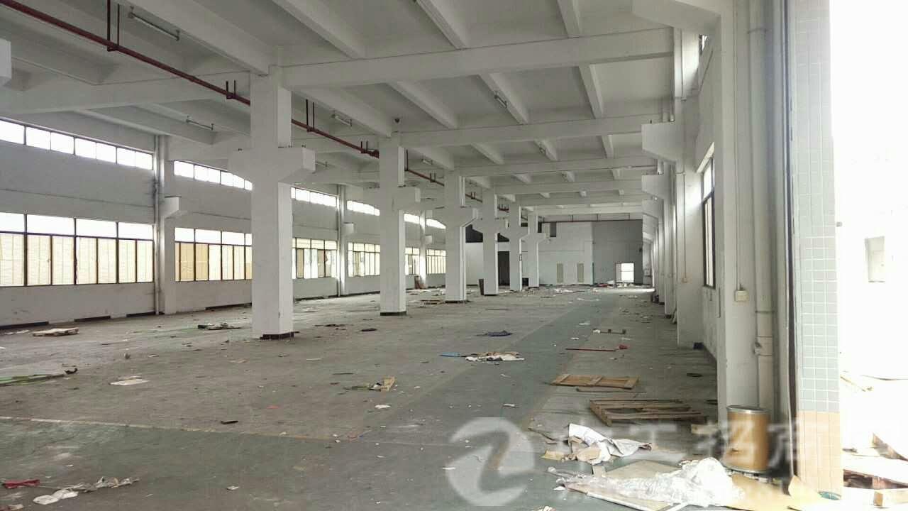 茶山分租独院4800平方,厂房建好刚使用两年,有环氧地坪漆-图2