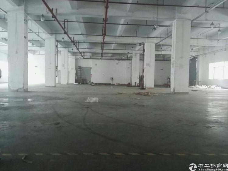 松岗高速出口楼楼上2500平米三顿货梯厂房招租