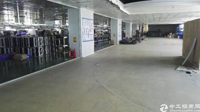 松岗大型工业园原房东出租一楼1800平方有地坪漆有阁楼办公室