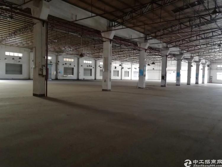 茶山新出单一层3600有宿舍办公
