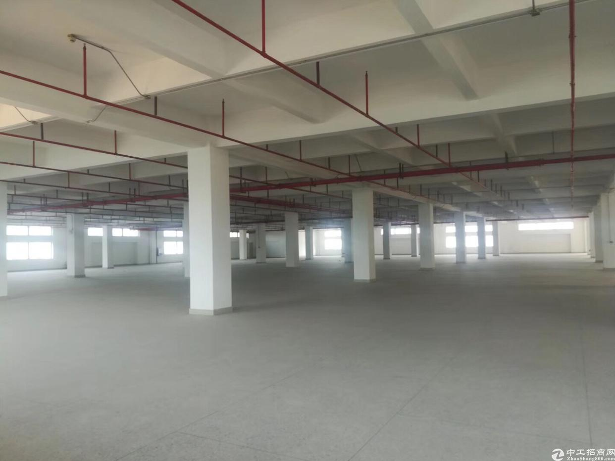 黄江靠高速路口全新厂房出租,厂房形象超好,带消防喷淋。