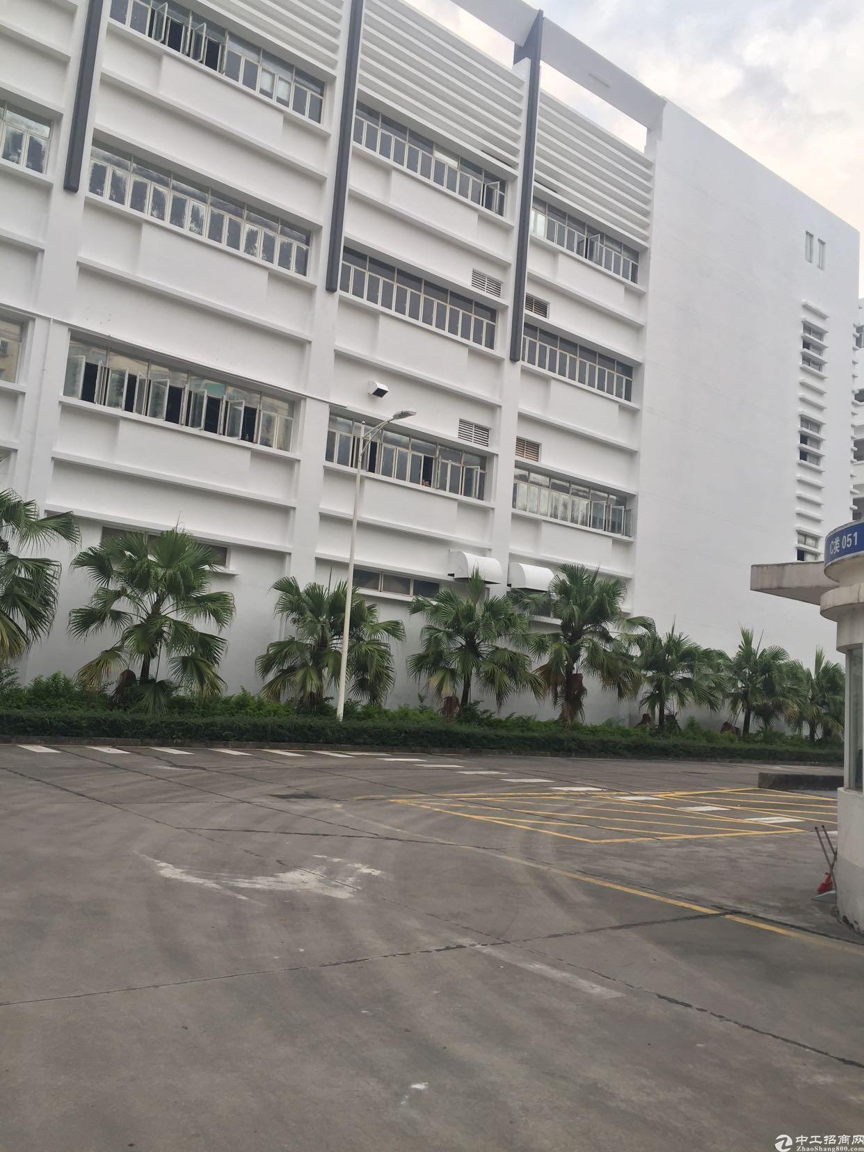 龙华清湖带装修厂房出租
