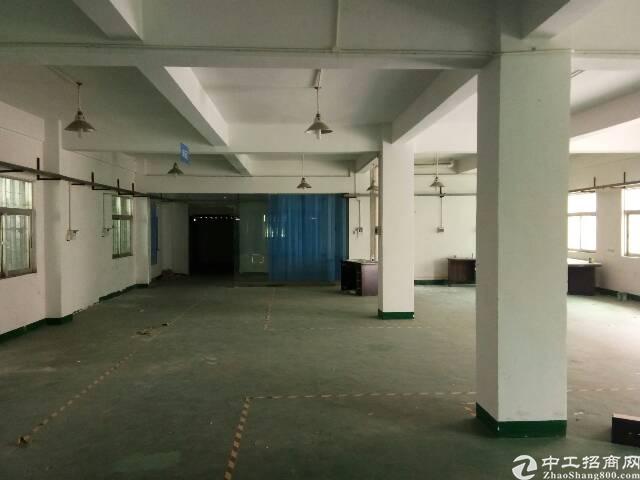 坪地新出原房东独院厂房900平米出租-图4