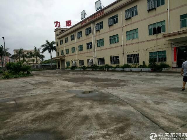 常平花园式厂房15000平方独门独院招租-图2