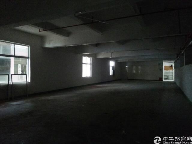 福永107边上凤凰油站附近楼上1500平方带装修不要转让费