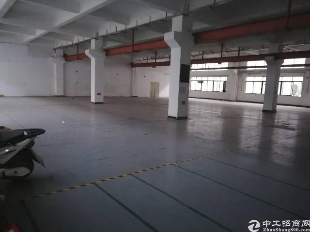 公明龙大高速楼村出口新出一楼2400平可分租-图4
